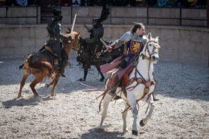 מופע אבירים