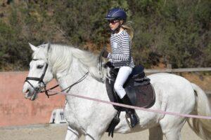 רכיבה על סוסי פוני