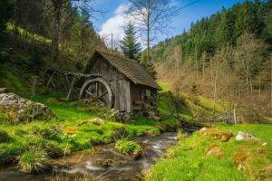 טחנת קמח ביער