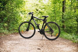 אופניים ביער השחור